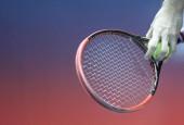 ATP finale: Đoković i Zverev za titulu