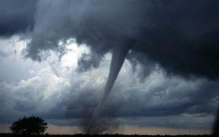 Najmanje 40 mrtvih nakon tajfuna Hagibis