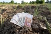 Ministarstvo poljoprivrede predstavilo plan objave natječaja iz Programa ruralnog razvoja do kraja 2021. godine
